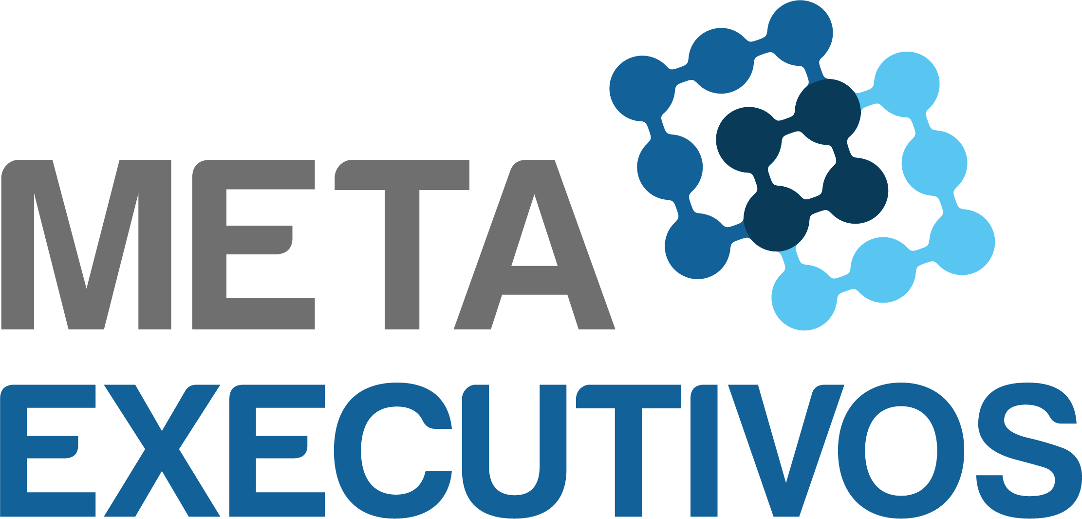 Meta Executivos